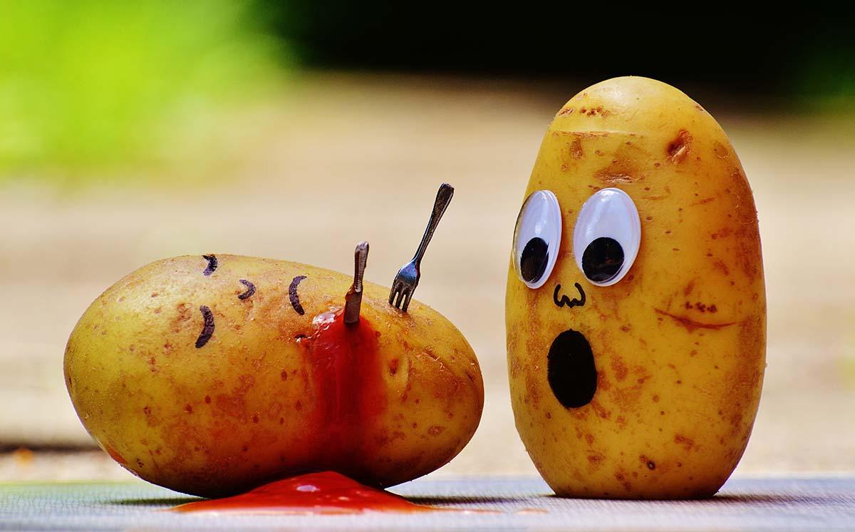 """,,Ott ragadtam a pult fölött egy krumpliba ragadt késsel."""" – te tudsz segítséget kérni?"""