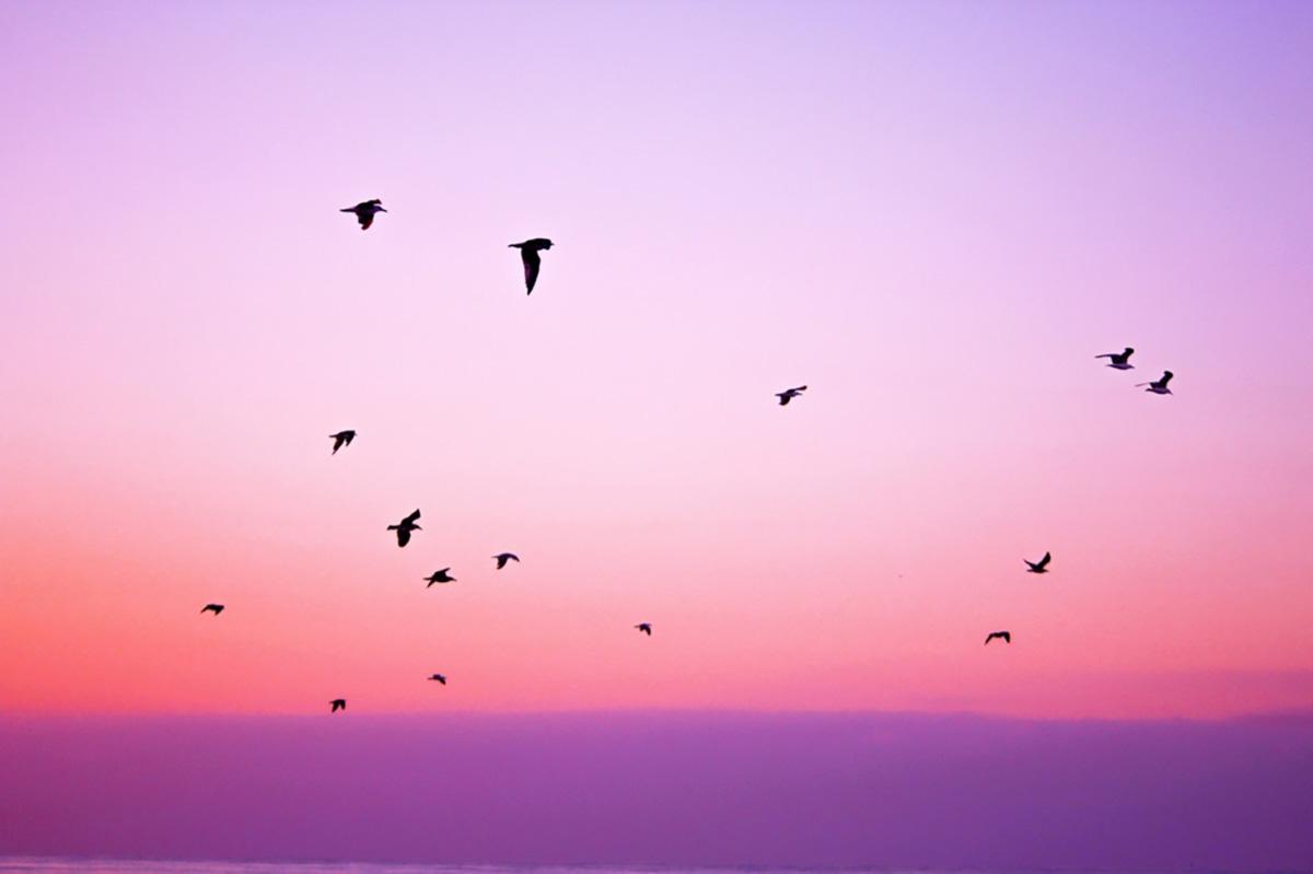 Korlátok hallássérültként? Vannak, és? - fogadd el őket és szárnyalj!